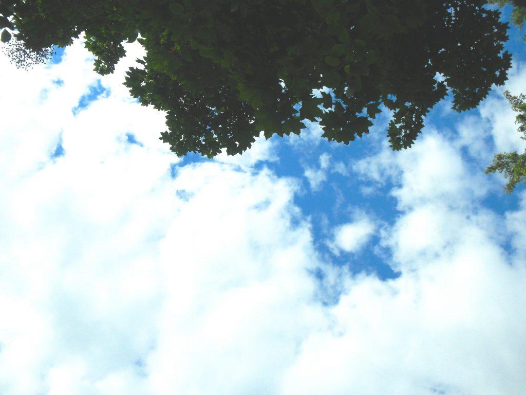 Guck in die Luft...